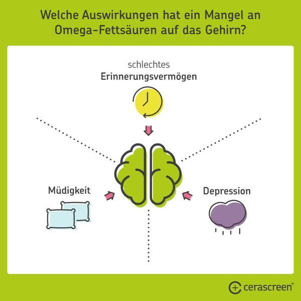 Омега-3-Мангель: Wirkung auf das Gehirn